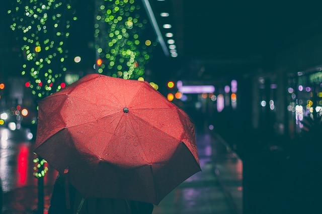 【悲報】コンビニで用を足している内に傘が盗まれるwww