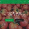 沖縄発のスタートアップ!ファームズマーケットの生鮮野菜ECが熱い!